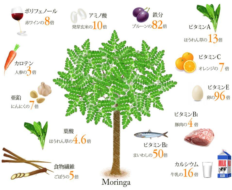 今夜くらべてみました新庄若さの秘密!健康法紹介!9/27